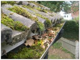 Gutter cleaning Brighton & Hove